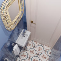 Туалет синий (1)