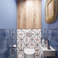 Туалет синий (2)